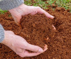 soil in farmer hands
