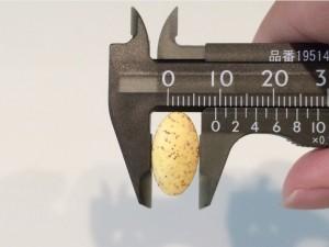 美的ヌーボ錠剤の大きさ05