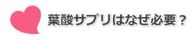葉酸サプリ_トップバナー03