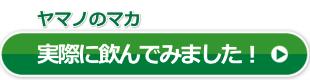 ヤマノのマカ詳細レビュー02