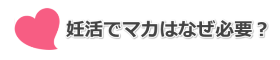マカサプリ_見出し_おすすめ02