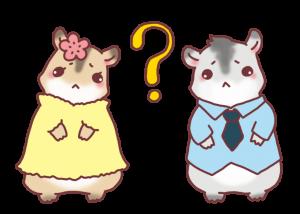 couple-hamster3