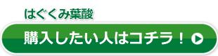 ハグクミ葉酸公式サイトボタン01