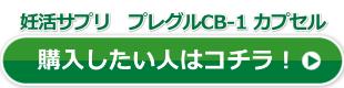 プレグル公式サイトボタン01