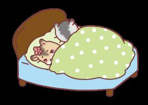 couple-hamster9