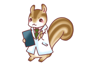 doctor-squirrel